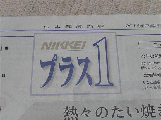 DSCN3702_R.JPG